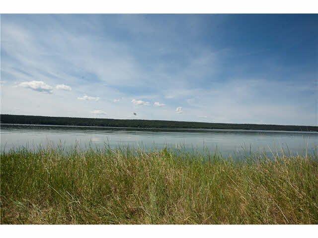 Main Photo: LOT 3 TROUT Drive: Lac la Hache House for sale (100 Mile House (Zone 10))  : MLS®# N246161