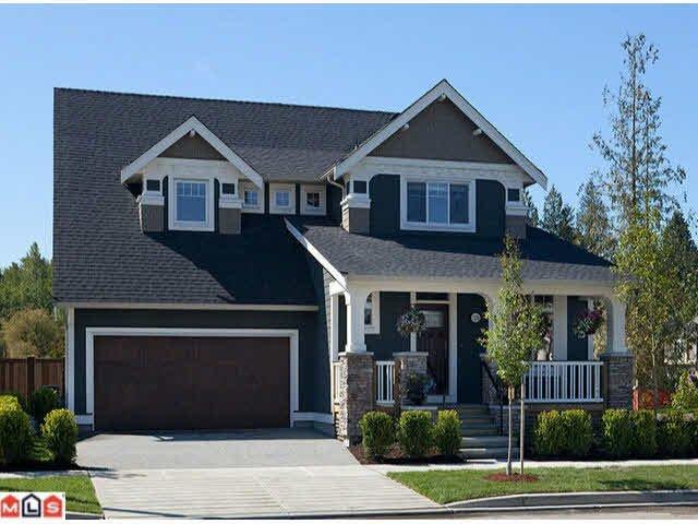 Main Photo: 17268 1 AVENUE in : Pacific Douglas House for sale : MLS®# F1126071