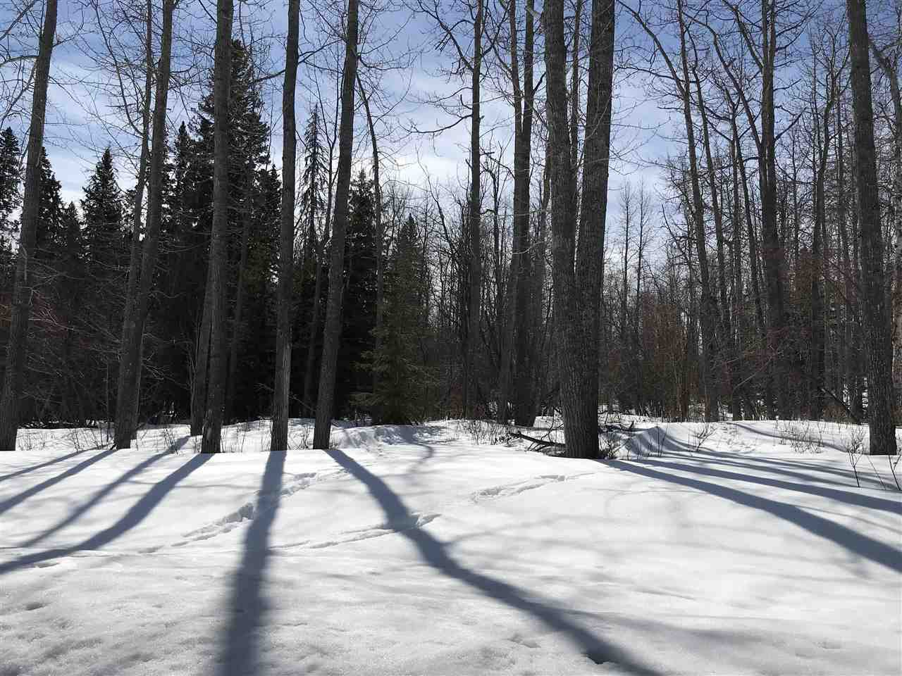 "Photo 2: Photos: LOT 7 TEA CREEK Estates in Charlie Lake: Lakeshore Land for sale in ""TEA CREEK ESTATES"" (Fort St. John (Zone 60))  : MLS®# R2259459"