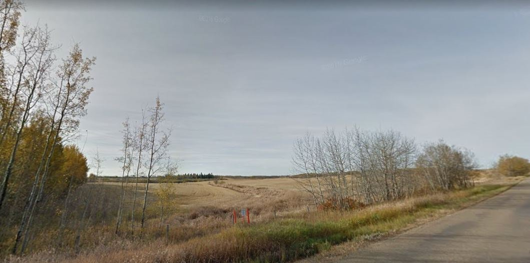 Photo 6: Photos: HIGHWAY 21 & TWP RD 521: Rural Strathcona County Rural Land/Vacant Lot for sale : MLS®# E4164759