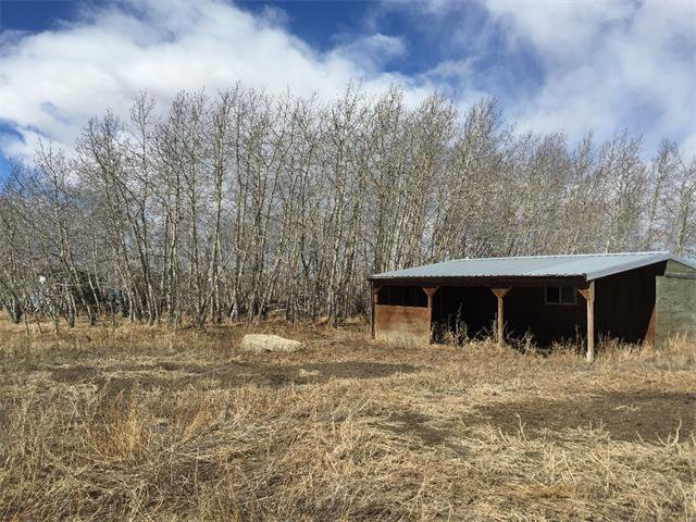 Photo 15: Photos: 32182 TWP RD 262 in Rural Rockyview County: Rural Rocky View MD House for sale : MLS®# C4006884