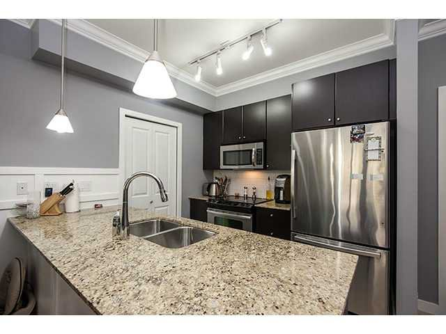 Main Photo: 215 225 FRANCIS Way in New Westminster: Fraserview NW Condo for sale : MLS®# V985741