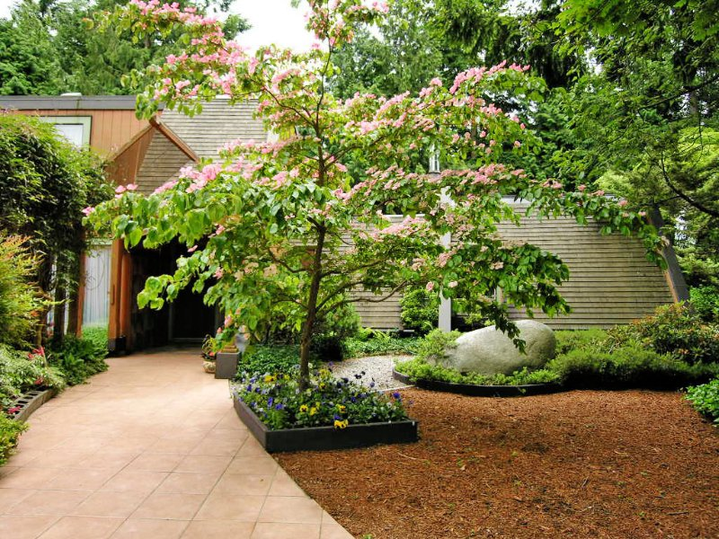 Secluded private entrance nestled under glass canopy amongst flowering dogwoods, rhododendrons and clematis