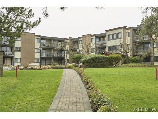 Main Photo: 315 1870 Mckenzie Ave in VICTORIA: SE Gordon Head Condo Apartment for sale (Saanich East)  : MLS®# 727377