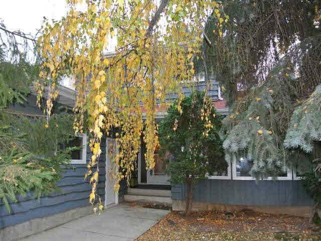 Main Photo: 16015 112 Street in Edmonton: Beaumaris House for sale : MLS®# E3393562
