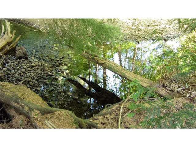 Photo 20: Photos: 114 1242 TOWN CENTRE Boulevard in Coquitlam: Canyon Springs Condo for sale : MLS®# V1139688