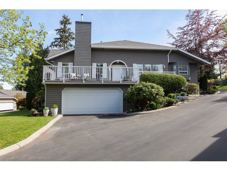 "Main Photo: 43 21848 50TH Avenue in Langley: Murrayville Townhouse for sale in ""Cedar Crest"" : MLS®# R2057565"