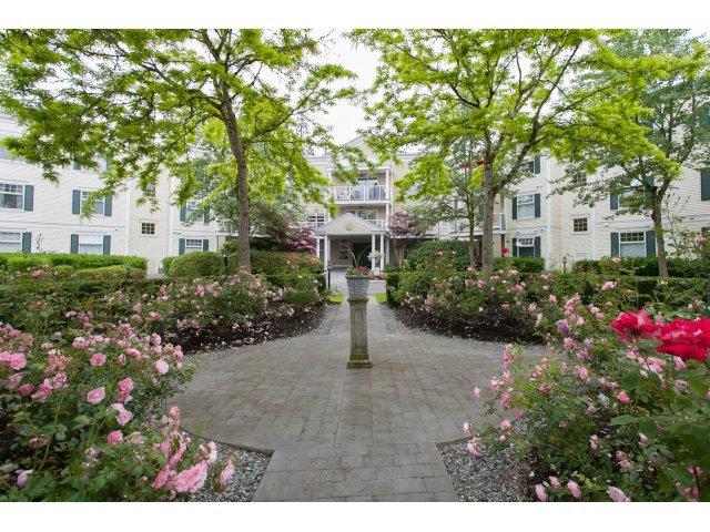 "Main Photo: 310 16085 83 Avenue in Surrey: Fleetwood Tynehead Condo for sale in ""Fairfield House"" : MLS®# F1442626"