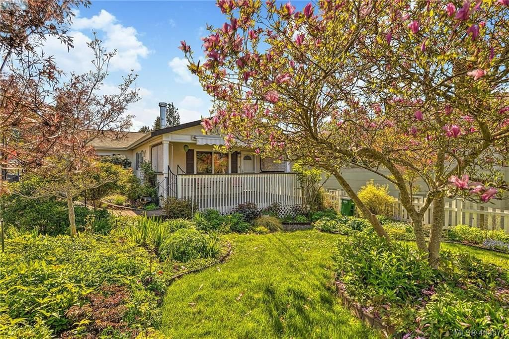 Main Photo: 2819 Rockwell Avenue in VICTORIA: SW Gorge Single Family Detached for sale (Saanich West)  : MLS®# 408571