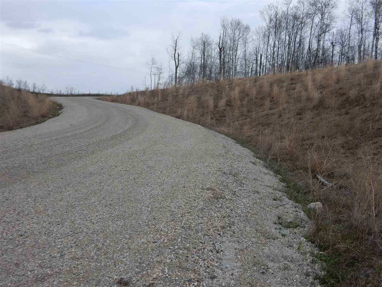 Photo 13: Photos: TWP ROAD 492 RANGE ROAD 234: Rural Leduc County Rural Land/Vacant Lot for sale : MLS®# E4155541