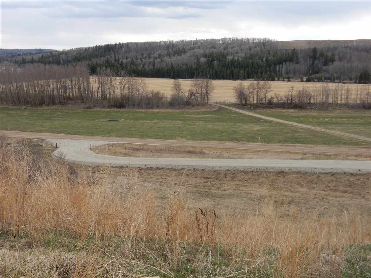 Photo 8: Photos: TWP ROAD 492 RANGE ROAD 234: Rural Leduc County Rural Land/Vacant Lot for sale : MLS®# E4155541