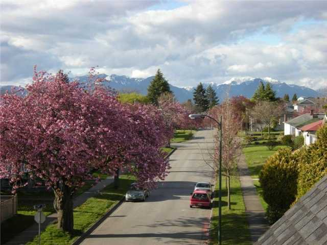 """Photo 9: Photos: 3208 E 54TH Avenue in Vancouver: Champlain Heights Townhouse for sale in """"CHAMPLAIN VILLAGE"""" (Vancouver East)  : MLS®# V893730"""