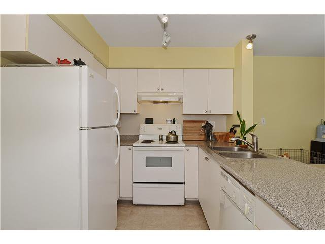 Photo 9: Photos: # 302 21 N RENFREW ST in Vancouver: Hastings East Condo for sale (Vancouver East)  : MLS®# V1020154