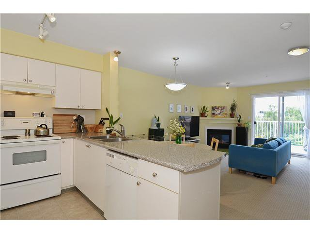 Photo 10: Photos: # 302 21 N RENFREW ST in Vancouver: Hastings East Condo for sale (Vancouver East)  : MLS®# V1020154