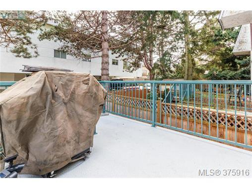 Photo 12: Photos: 547 Paradise St in VICTORIA: Es Esquimalt Half Duplex for sale (Esquimalt)  : MLS®# 754668