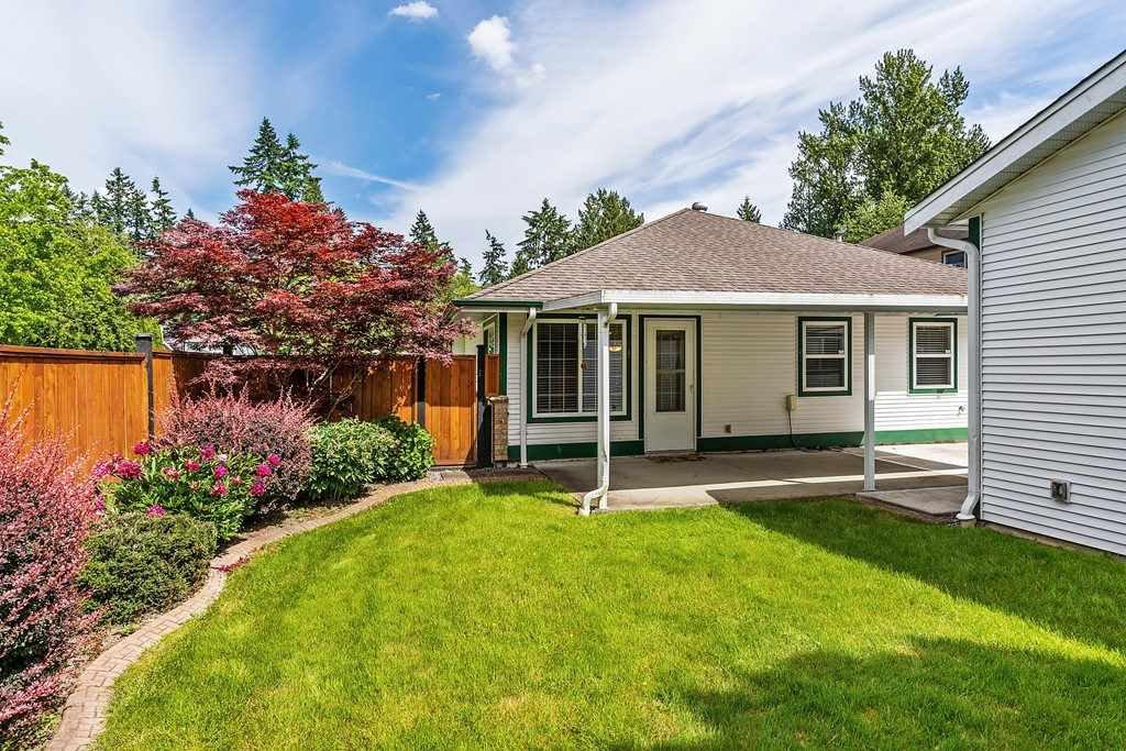 Photo 20: Photos: 11899 237 Street in Maple Ridge: Cottonwood MR House for sale : MLS®# R2377865