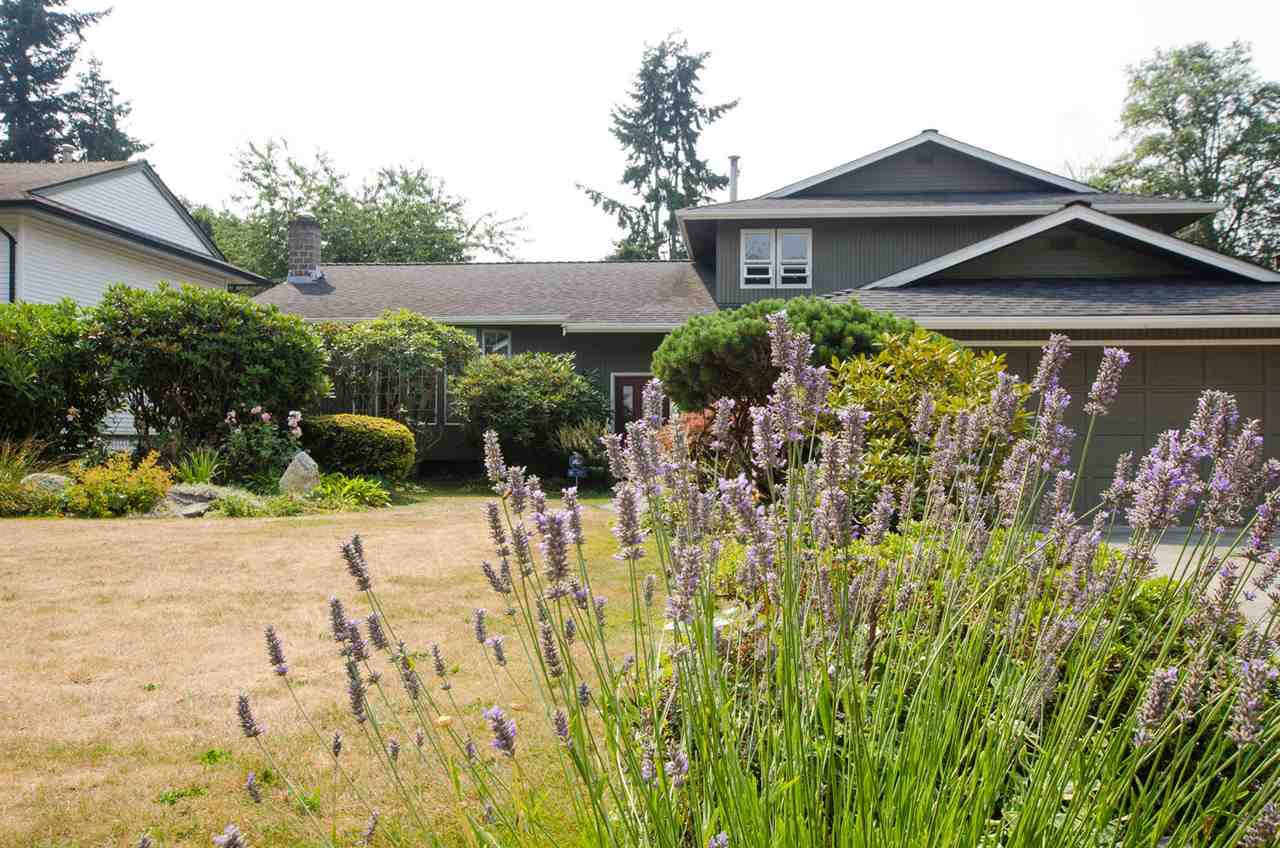 """Photo 1: Photos: 5334 2ND Avenue in Delta: Pebble Hill House for sale in """"PEBBLE HILL"""" (Tsawwassen)  : MLS®# R2196817"""