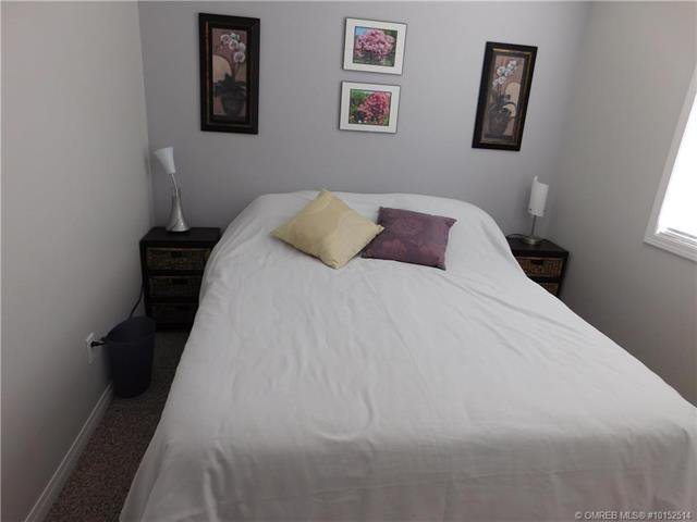 Photo 22: Photos: 331 Southeast 17 Street in Salmon Arm: House for sale (SE Salmon Arm)  : MLS®# 10152514
