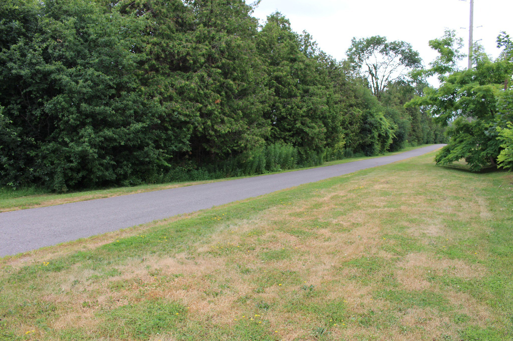 Photo 37: Photos: 716 Prince of Wales Drive in Cobourg: Residential Detached for sale : MLS®# 209153
