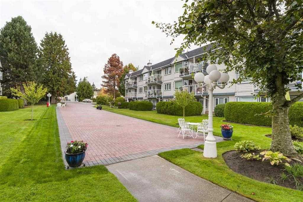 "Main Photo: 205 13965 16 Avenue in Surrey: Sunnyside Park Surrey Condo for sale in ""White Rock Village Condos"" (South Surrey White Rock)  : MLS®# R2349896"