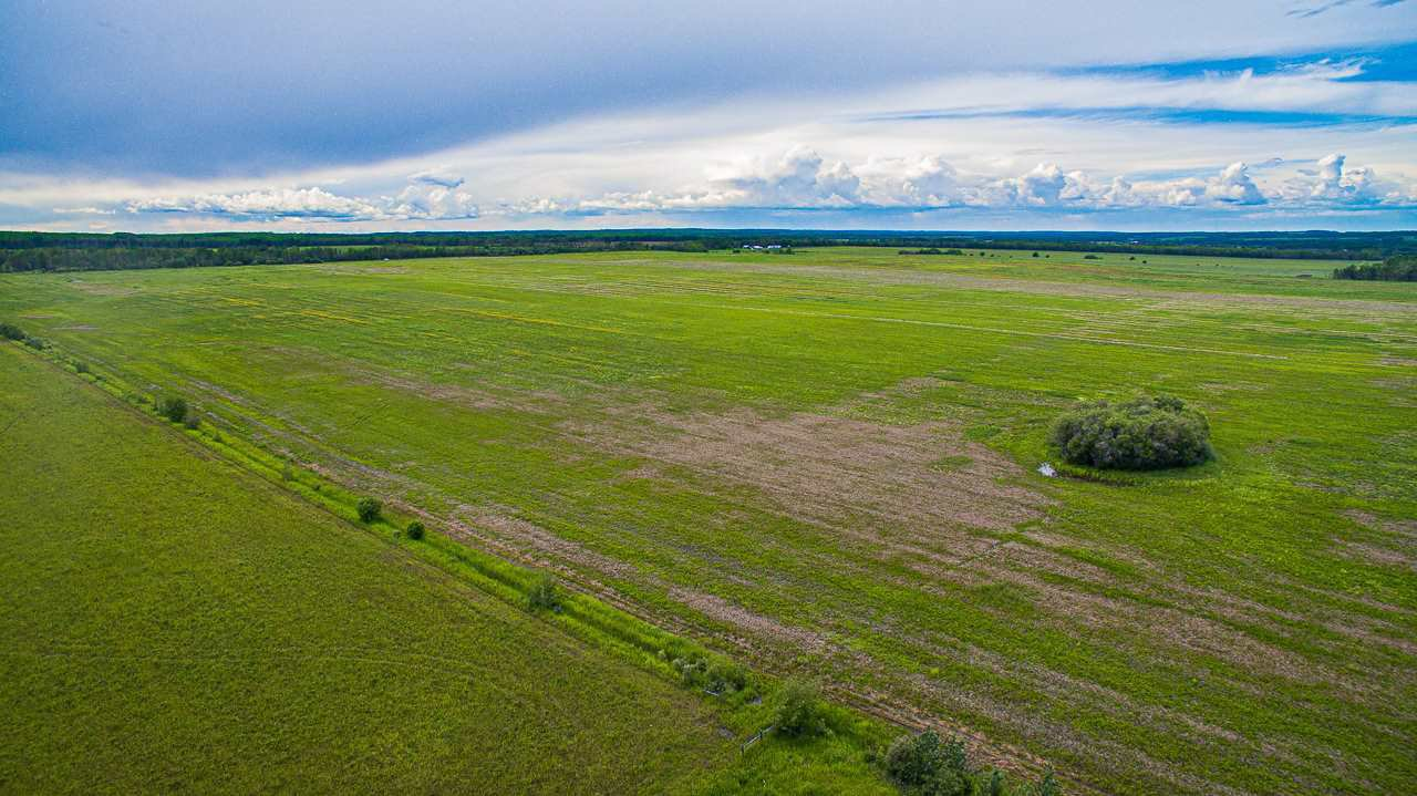 Main Photo: NW1/4 265 Road in Fort St. John: Fort St. John - Rural W 100th Land for sale (Fort St. John (Zone 60))  : MLS®# R2474232