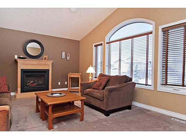 Photo 11: Photos: 176 CHAPALA Drive SE in CALGARY: Chaparral Residential Detached Single Family for sale (Calgary)  : MLS®# C3598286