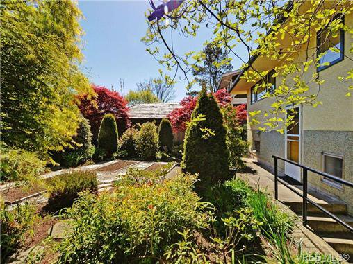 Photo 20: Photos: 89 Wellington Ave in VICTORIA: Vi Fairfield West House for sale (Victoria)  : MLS®# 698630
