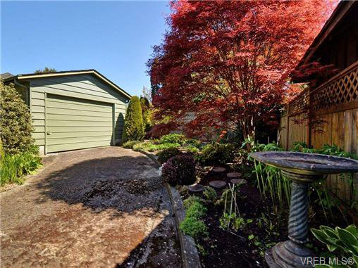 Photo 19: Photos: 89 Wellington Ave in VICTORIA: Vi Fairfield West House for sale (Victoria)  : MLS®# 698630