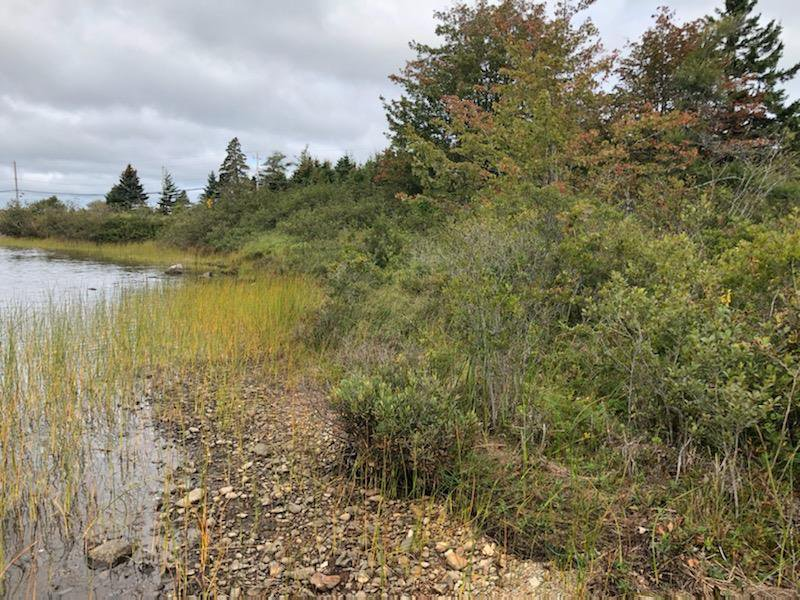 Photo 3: Photos: Lot H2 Bellefontaine Road in West Chezzetcook: 31-Lawrencetown, Lake Echo, Porters Lake Vacant Land for sale (Halifax-Dartmouth)  : MLS®# 202019368