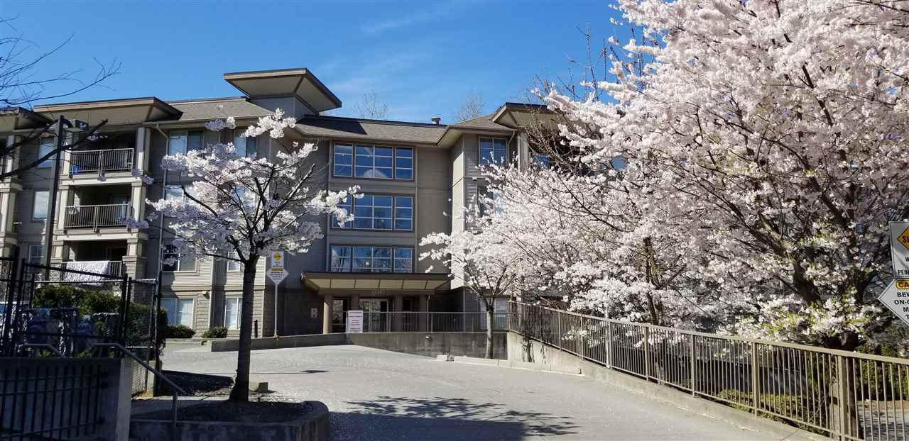 Main Photo: 401 45567 YALE Road in Chilliwack: Chilliwack W Young-Well Condo for sale : MLS®# R2354868