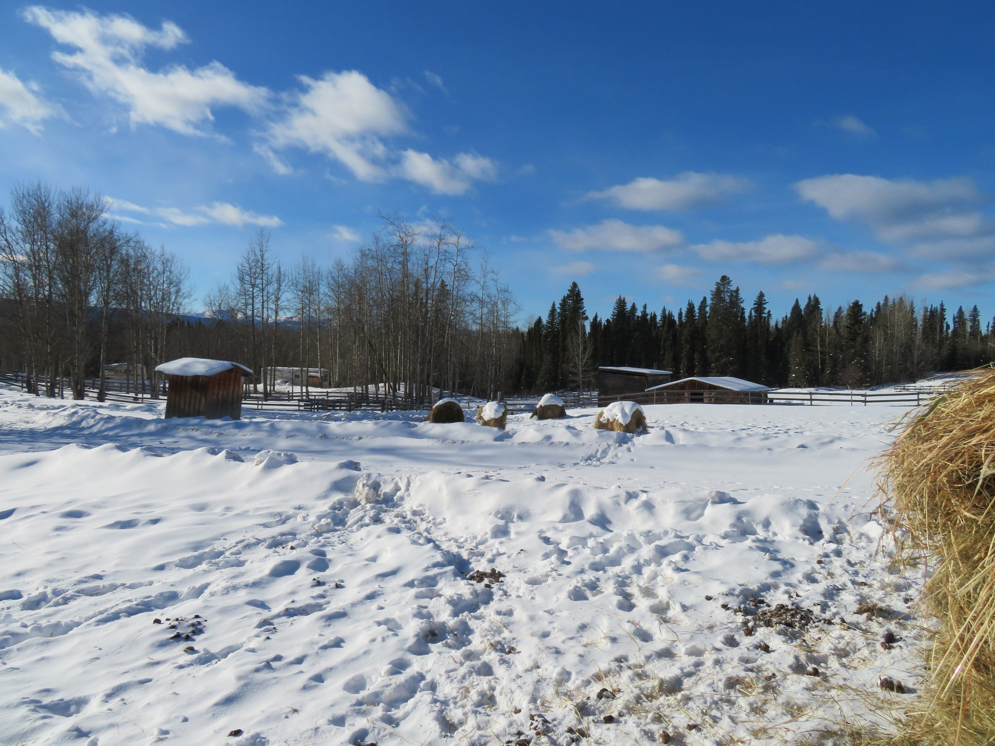 Photo 2: Photos: 26588 - 26606 SIKANNI CHIEF Road in Fort St. John: Fort St. John - Rural W 100th House for sale (Fort St. John (Zone 60))  : MLS®# R2191373