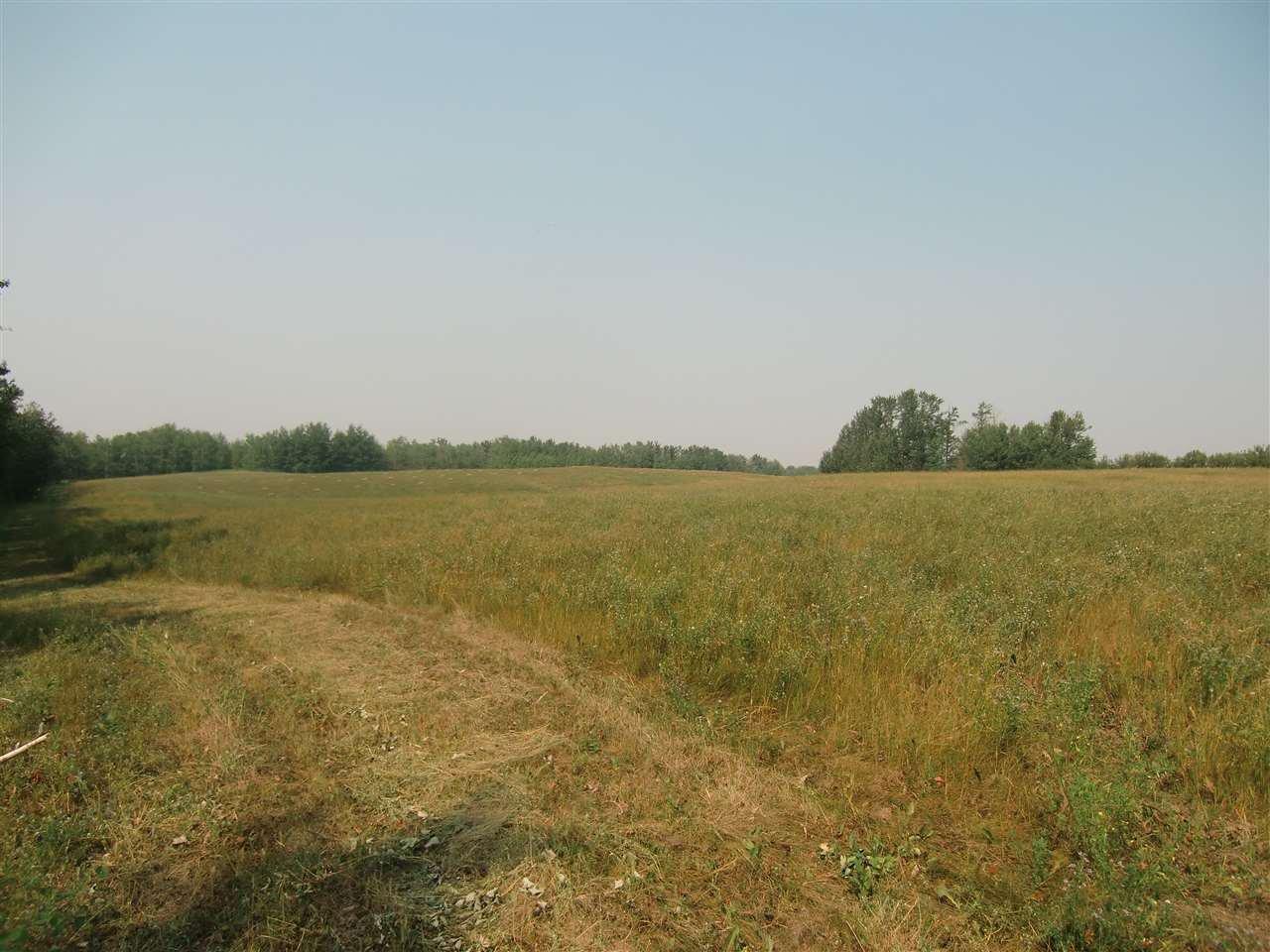 Main Photo: Range Road 220 Township 530: Rural Strathcona County Rural Land/Vacant Lot for sale : MLS®# E4124889
