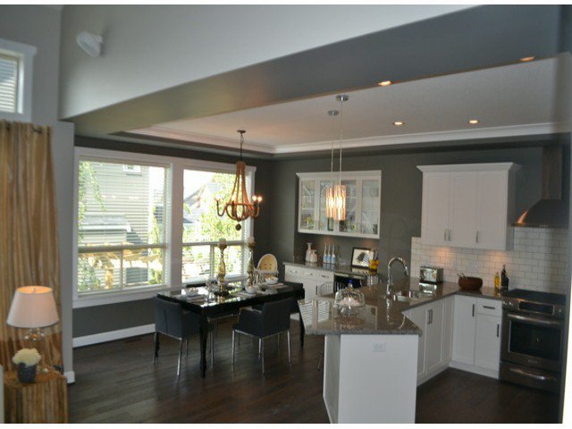 """Photo 2: Photos: 21061 78A Avenue in Langley: Willoughby Heights House for sale in """"YORKSON SOUTH"""" : MLS®# F1326040"""