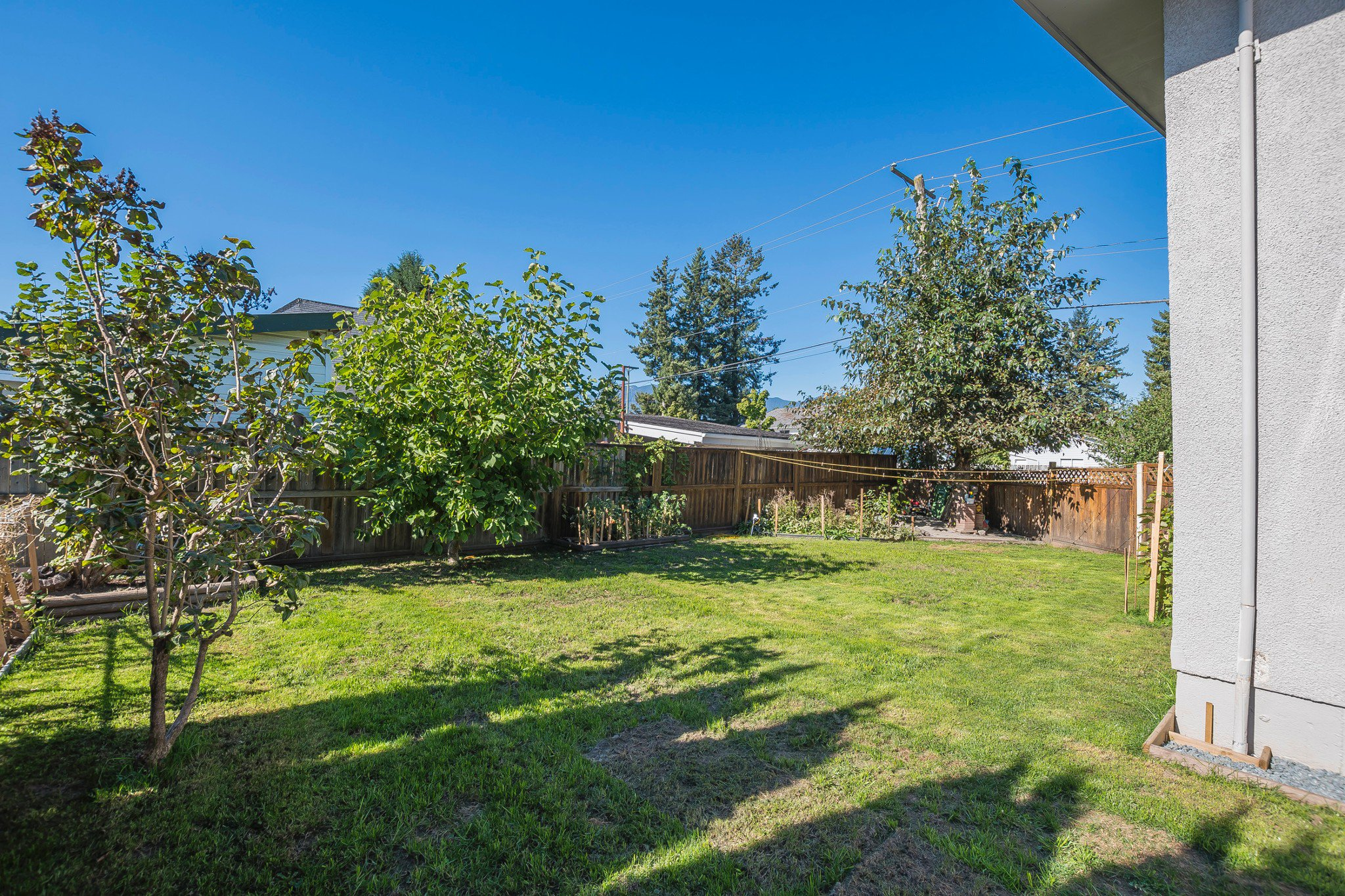 Photo 22: Photos: 46240 Reece: Chilliwack House for sale : MLS®# R2211935