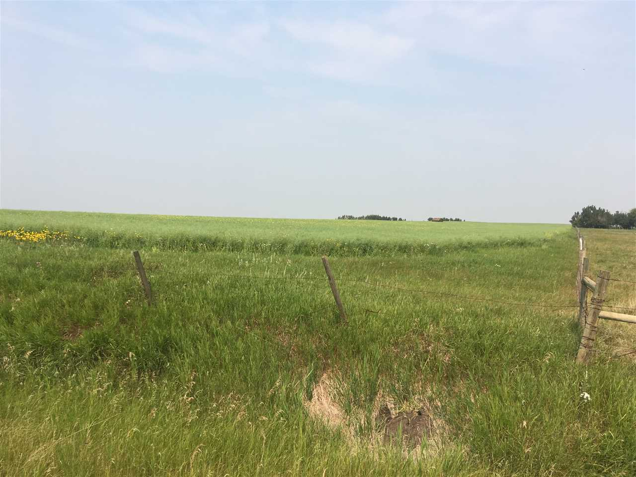 Main Photo: RR 155 TWP 492: Rural Beaver County Rural Land/Vacant Lot for sale : MLS®# E4129268