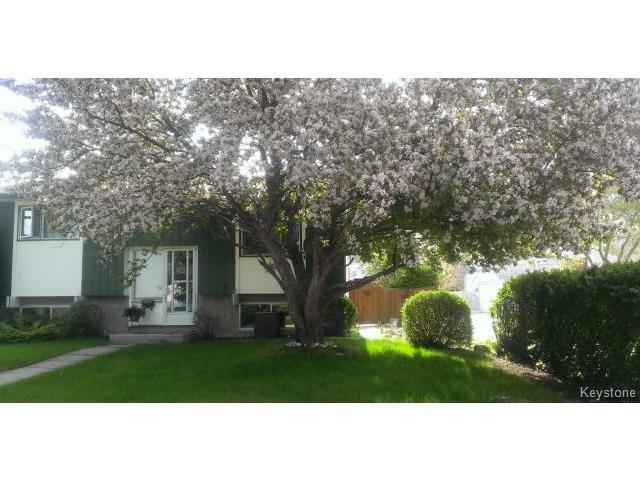 Main Photo: 376 Dowling Avenue in WINNIPEG: Transcona Residential for sale (North East Winnipeg)  : MLS®# 1409413