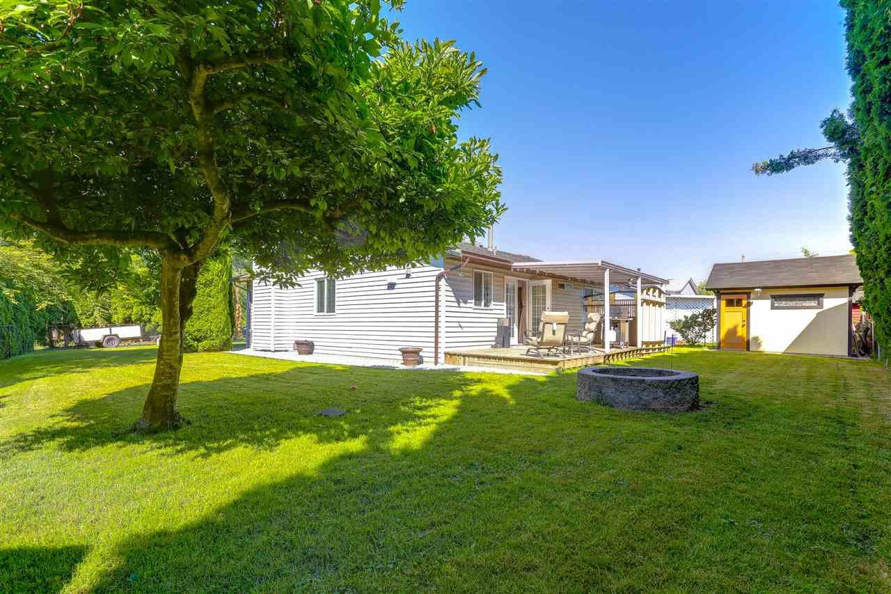 Photo 19: Photos: 11002 HAZELWOOD Street in Maple Ridge: Southwest Maple Ridge House for sale : MLS®# R2281905