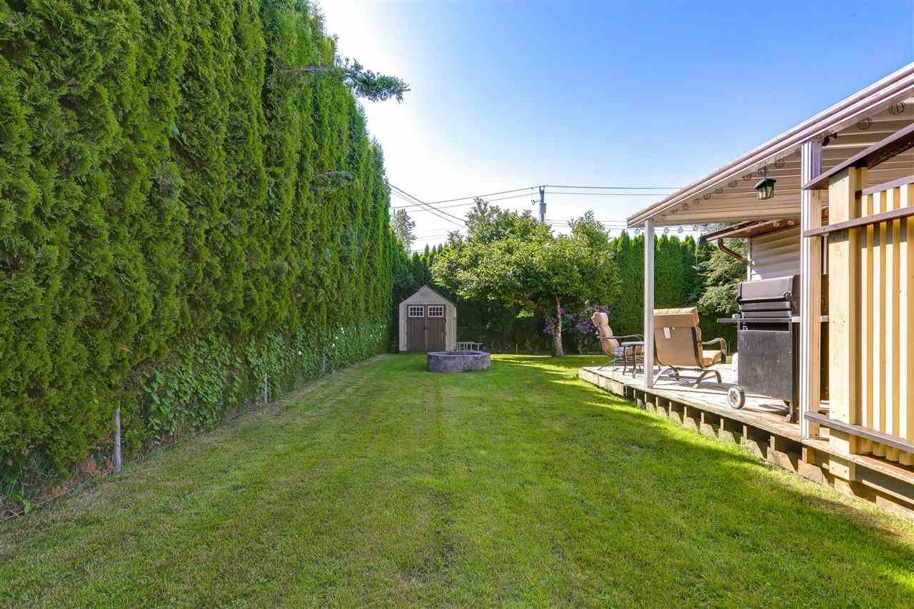Photo 16: Photos: 11002 HAZELWOOD Street in Maple Ridge: Southwest Maple Ridge House for sale : MLS®# R2281905