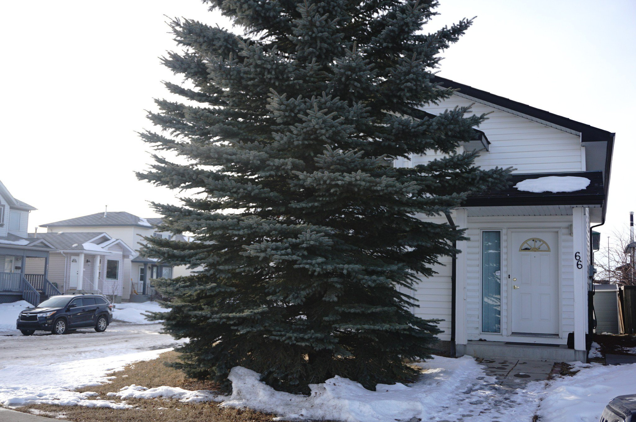 Main Photo: 66 Appleburn Close E in Calgary: Applewood Park House for sale