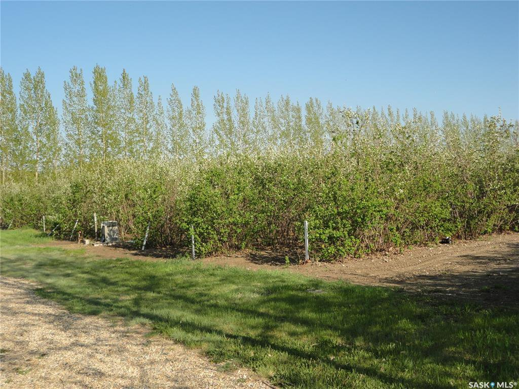 Main Photo: Lot-B Marina Orchard in Blucher: Lot/Land for sale (Blucher Rm No. 343)  : MLS®# SK819447