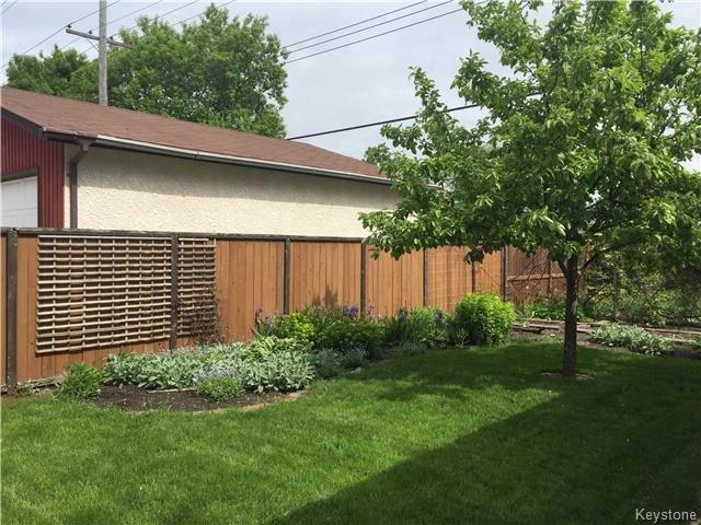 Photo 17: Photos: 297 Knowles Avenue in Winnipeg: North Kildonan Residential for sale (3G)  : MLS®# 1809527