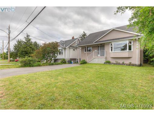 Main Photo: 1817 Newton Street in VICTORIA: SE Camosun Residential for sale (Saanich East)  : MLS®# 378993