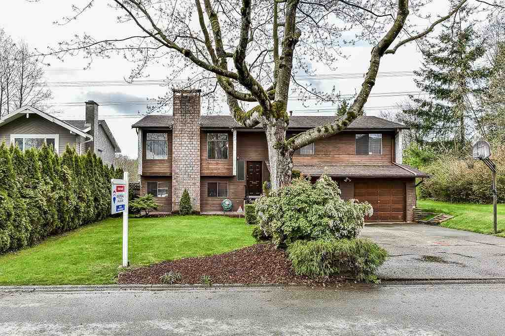Main Photo: 8643 W TULSY Crescent in Surrey: Queen Mary Park Surrey House for sale : MLS®# R2257341