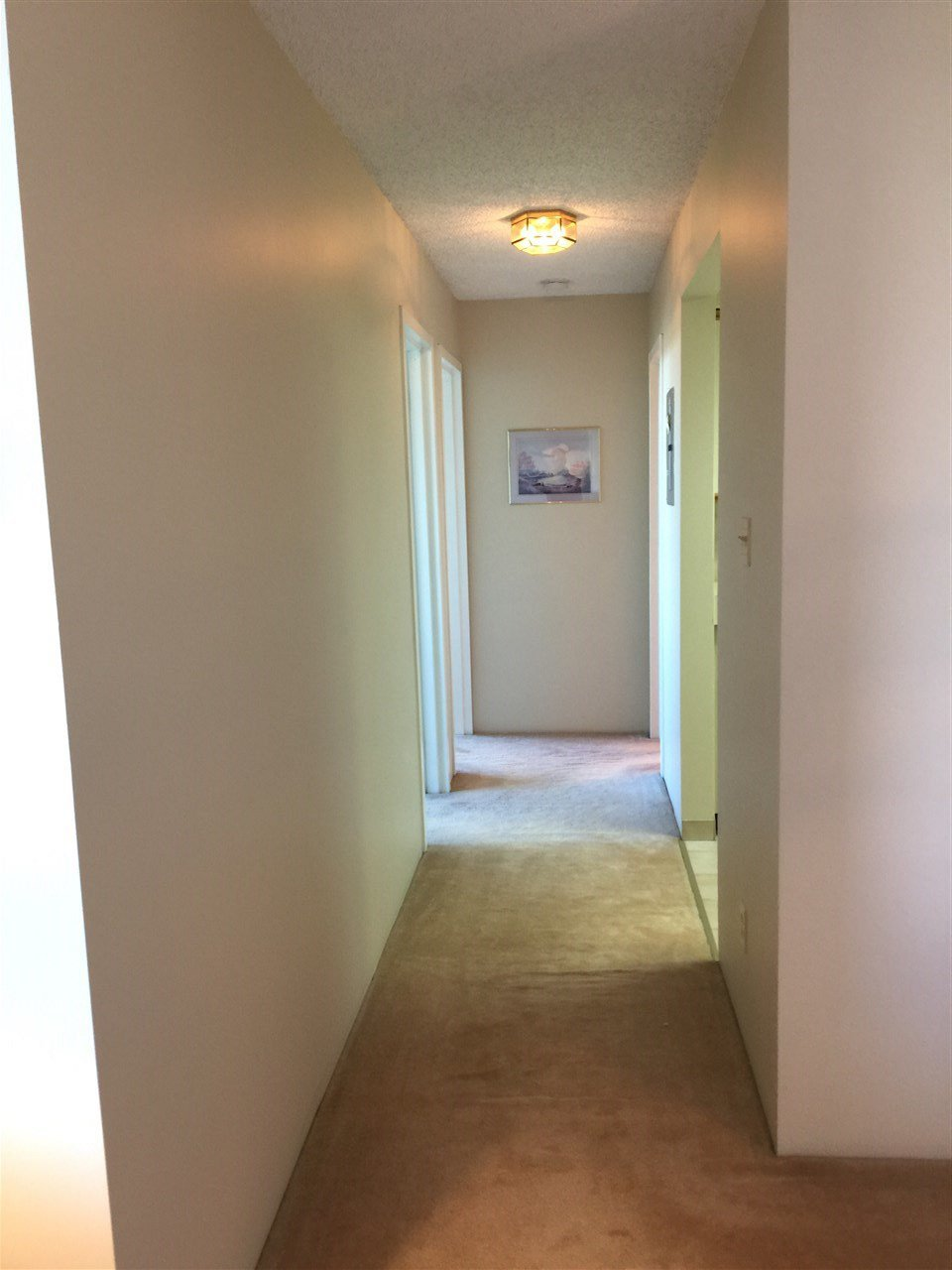 """Photo 9: Photos: 307 3920 HASTINGS Street in Burnaby: Willingdon Heights Condo for sale in """"INGLETON TERRACE"""" (Burnaby North)  : MLS®# R2181109"""