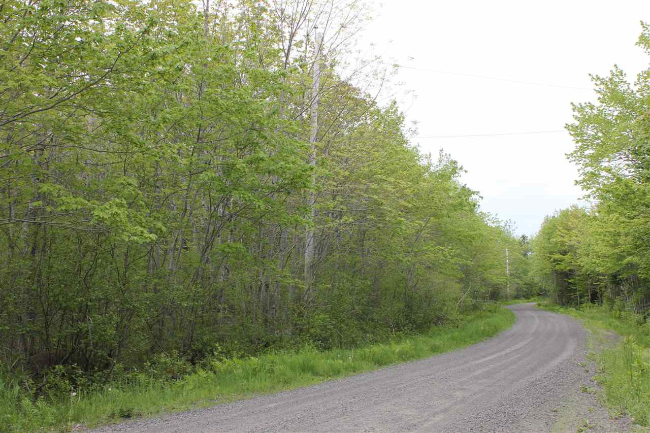 Main Photo: Lot Greenland in Greenland: 400-Annapolis County Vacant Land for sale (Annapolis Valley)  : MLS®# 201917847