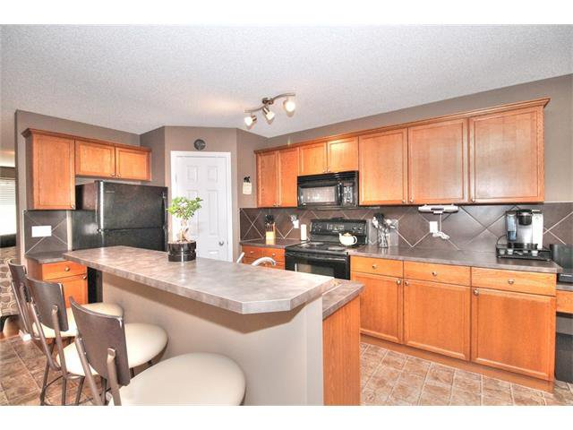 Photo 18: Photos: 710 EVERRIDGE Drive SW in Calgary: Evergreen House for sale : MLS®# C4065103