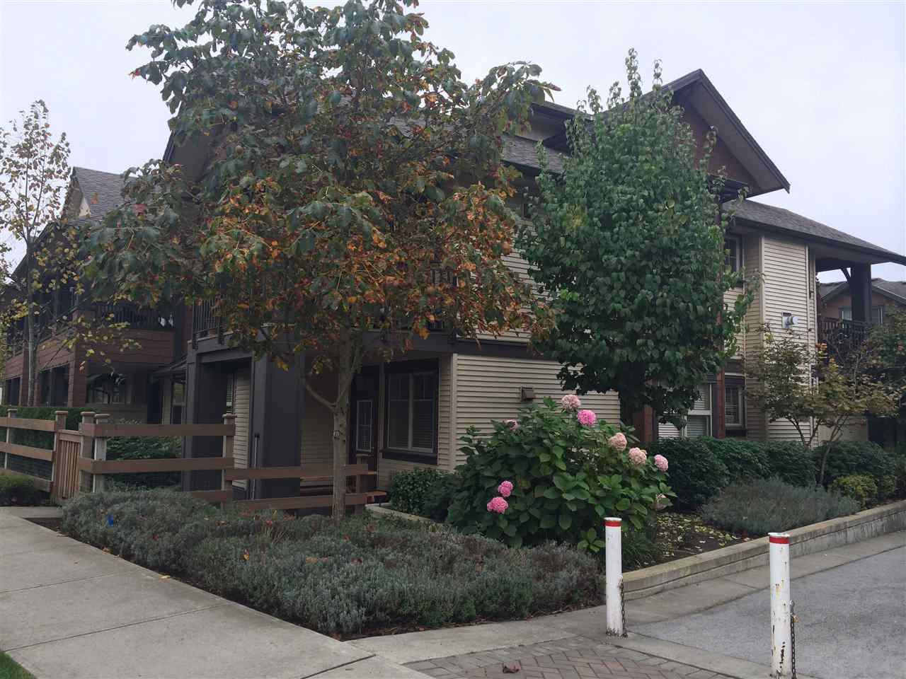"""Main Photo: 41 19478 65 Avenue in Surrey: Clayton Townhouse for sale in """"Sunset Grove"""" (Cloverdale)  : MLS®# R2142025"""