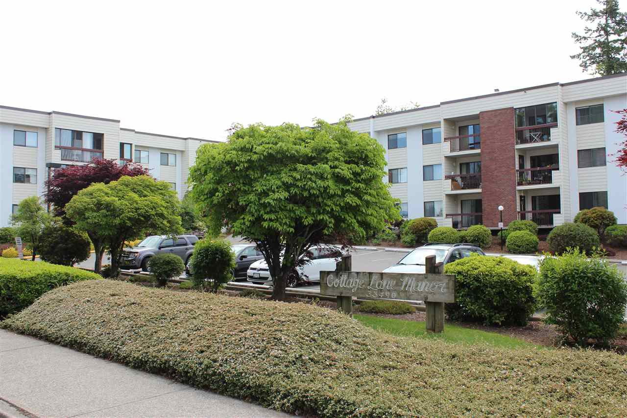 "Main Photo: 118 33490 COTTAGE Lane in Abbotsford: Central Abbotsford Condo for sale in ""Cottage  lane"" : MLS®# R2370647"