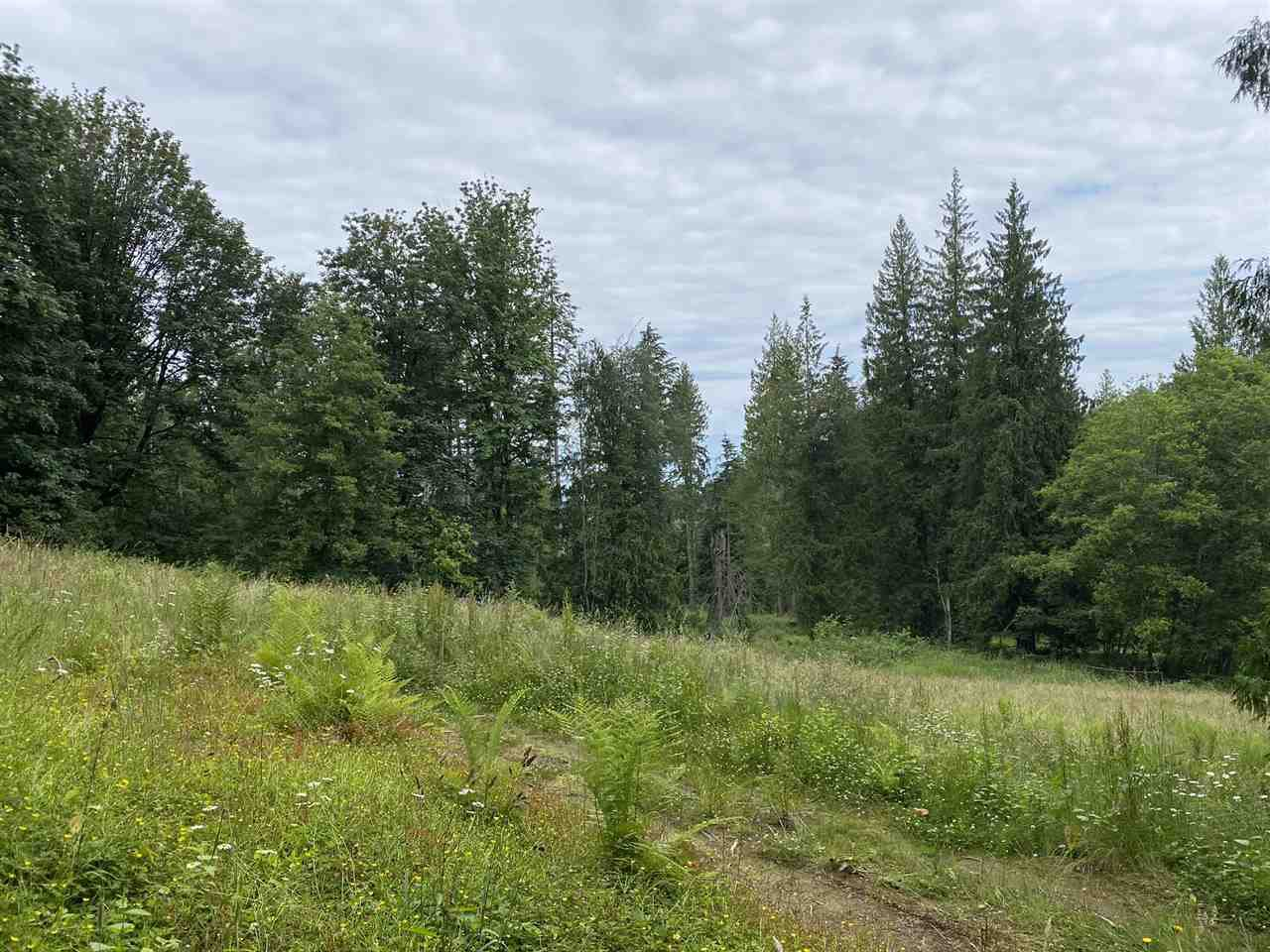 Main Photo: 5673 EXTROM Road in Chilliwack: Ryder Lake Land for sale (Sardis)  : MLS®# R2472600