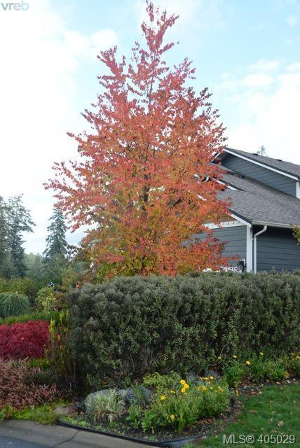 Photo 29: Photos: 2324 Demamiel Pl in SOOKE: Sk Sunriver House for sale (Sooke)  : MLS®# 804798